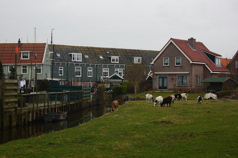 Marken evleri, kanalları, bahçeleri, tavukları ve inekleri