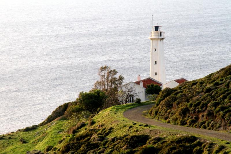 Sarpıncık deniz feneri