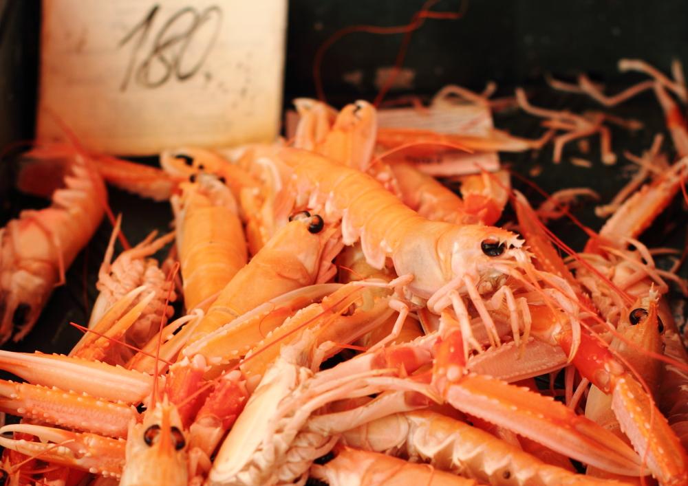 Split balık pazarı