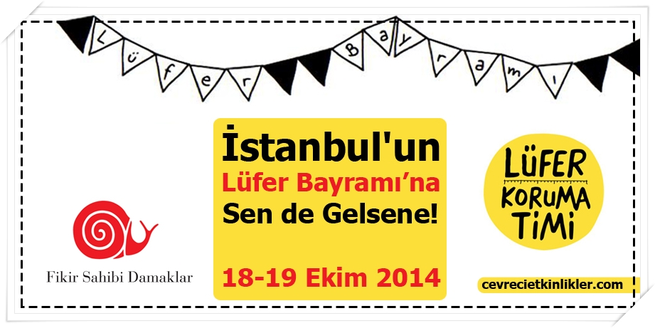 İstanbul Lüfer Bayramı